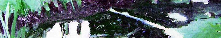 Waldstück, 2005